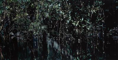 Axel Hütte, 'Kakadu National Park I, Australia', 1999