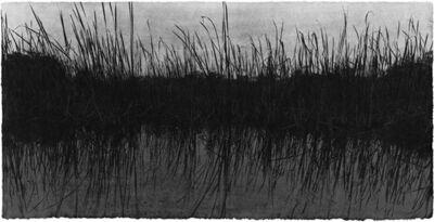 Jungjin Lee, 'Everglades 10', 2014