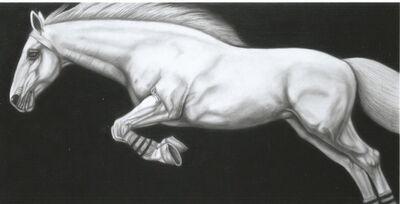 Joseph Piccillo, 'Untitled 3', 2014