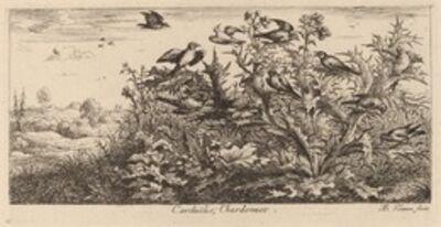 Albert Flamen, 'Carduelis, The Goldfinch'