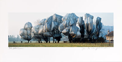Christo and Jeanne-Claude, 'Wrapped Trees', Fondation Beyeler