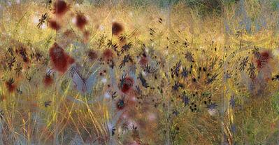 Lori Van Houten, 'Stained Silk (Windfall)', 2004