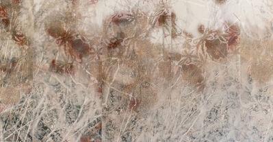 Lori Van Houten, 'Stained Silk (Delusional Flowers)', 2004
