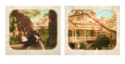Tracey Moffatt, 'Plantation (Diptych No. 7)', 2009