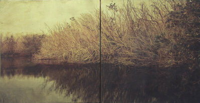 Dorothy Simpson Krause, 'Backwater', 2008