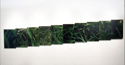 Anne Veraldi, 'The Grassy Knoll, Dallas, TX', 2002