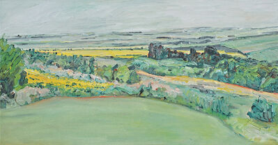Dorothy Knowles, 'Green and Yellow Fields (OC-003-05)', 2005