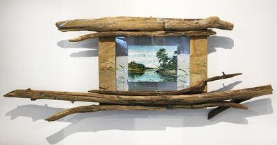 Nall, 'Venice, Louisiana Swamps', 2010