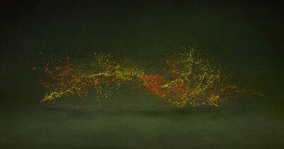 Shinichi Maruyama, 'Garden #10', 2010