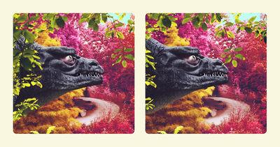 Jim Naughten, 'Megalosaurus Head', 2016