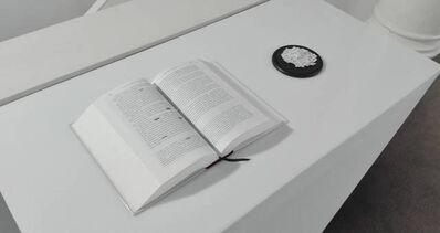 Ricardo Coello Gilbert, 'Linderos de un espejismo', 2017