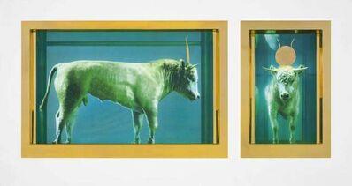 Damien Hirst, 'The Golden Calf', 2009