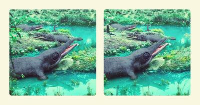 Jim Naughten, 'Ichthyosaurus', 2016