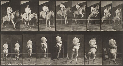 Eadweard Muybridge, 'Horses Galloping and Jumping (from Animal Locomotion, Plate 645),', 1887