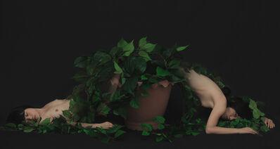 Sun Mi Ahn, 'Deux-Branches', 2013