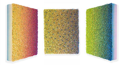 Zhuang Hong Yi, 'Flowerbed Colour Change #S2011', 2020