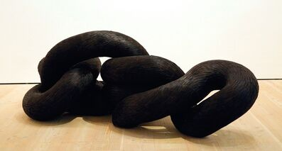 Kate MccGwire, 'Corvid', 2011