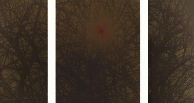 Ori Gersht, 'Haze (Triptych)', 2004