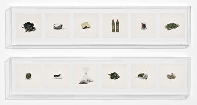Taryn Simon, 'LEAVES (PROHIBITED)', 2010