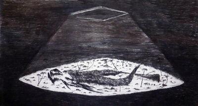 Matías Duville, 'Descomposition', 2013