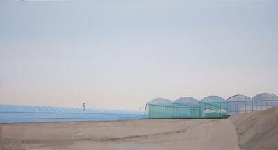 Ana Garcia Perez, 'Invernadero 5', 2013