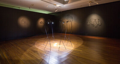 Phuong Linh Nguyen, 'Memory of the Blind Elephant', 2016