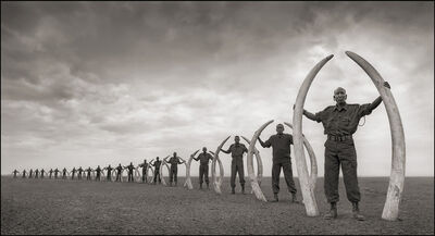 Nick Brandt, 'Line of Rangers with Tusks of Killed Elephants, Amboseli ', 2011