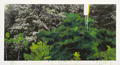 Honggoo Kang, 'Study of Green - White Flower', 2012