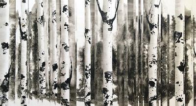 Anastasia Kimmett, 'Dreamscape with Aspens'