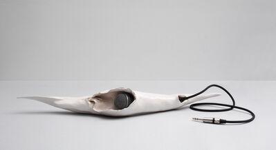 Emiliano Maggi, 'Microphone (Spettro Sound System)', 2014