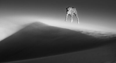 David Yarrow, 'Ethereal Dune', 2013