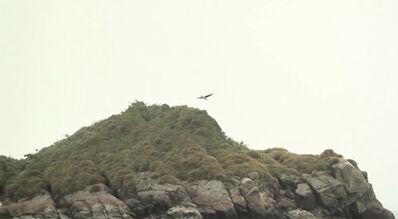 Gianfranco Foschino, 'Isla de Lobos', 2014