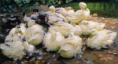 Alexander Max Koester, 'Moulting Ducks', ca. 1900