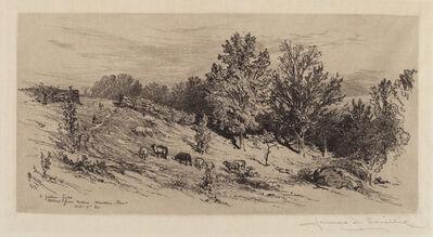 James David Smillie, 'A Fallow Field', 1883
