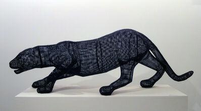 Nicola Bolla, 'Vanitas, Black Panther', 2009