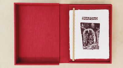 Sheroanawë Hakihiiwë, 'Shapono', 2000