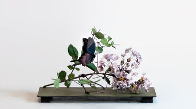 Carmen Almon, 'Crepe Myrtle with Large Dark Butterfly', 2019