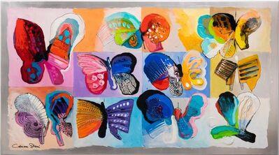 Calman Shemi, 'Butterflys Palette ', 2019