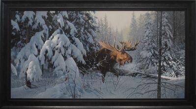 Douglas R. Laird, 'Moose in Winter', 2019