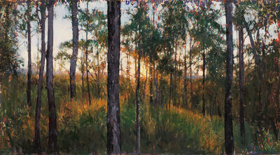 A.J. Taylor, 'Wildhorse Mountain Sunset 1', 2015