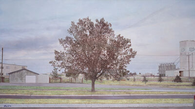 Jack Hoyer, 'Montana Parking Lot Tree', 2013