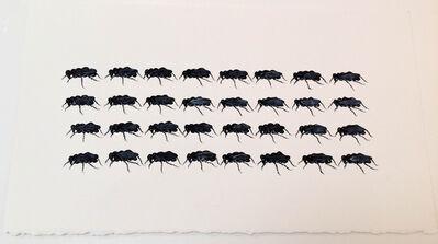 Cynthia Mulcahy, 'Battle Study XIII, from the War Garden series', 2018