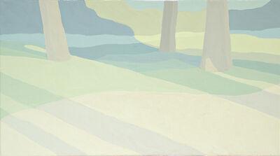 Emre Meydan, 'Landscape series no:39', 2013