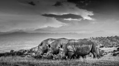 James Lewin, 'Three of the Few, Borana, Kenya.', 2020