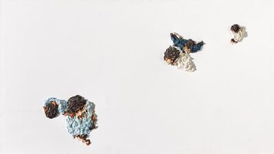 Clemens Krauss, 'Chromosomes', 2007