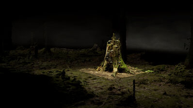 Persijn & Margit Broersen & Lukács, 'Point Cloud, Old Growth', 2018