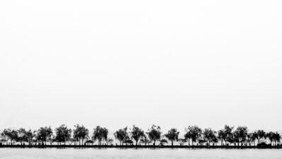 Damián Chiappe, ' Lago Oeste', 2016