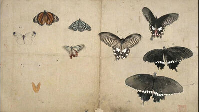 Mami Kosemura, '蝶  – Butterfly –', 2008