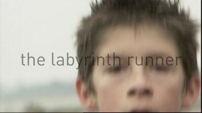 Robbie Cornelissen, 'The Labyrinth Runner', 2009