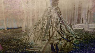 Joan Kaufman, 'Woodlands 12', 2019
